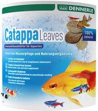 DENNERLE AquaRico Catappa Leaves Seemandelbaumblätter