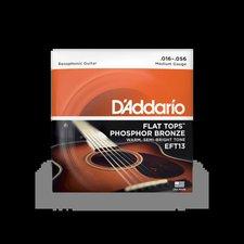 Daddario EFT13 Flat Tops Saitensatz
