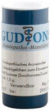 GudJons Thuja Occidentalis C 12 Globuli (1,5 g)