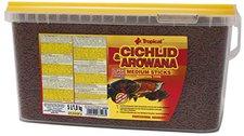 Tropical Cichlid & Arowana Medium Sticks (5 l)