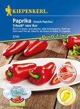 Snack Paprika (rot)