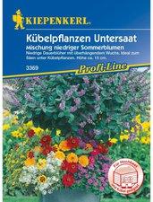 Kübelpflanzen-Untersaat