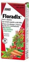 Duopharm Floradix Kräuterblut Eisen-Folsäure-Dragees (PZN 1986871)