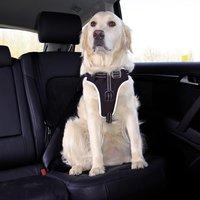 Trixie Dog Protect Sicherheitsgurt L