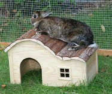 Kerbl Nature Plus Haus 82758