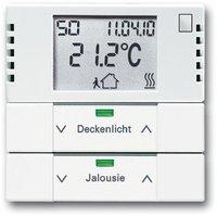 Busch-Jaeger Raumtemperaturregler mit Tastsensor 2fach (6128-84-101)