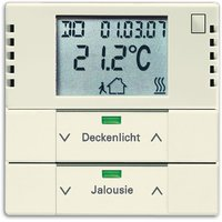 Busch-Jaeger Raumtemperaturregler mit Tastsensor 2fach (6128-82-101)