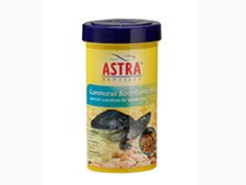 ASTRA Aquaria Gammarus Bachflohkrebse (1.000 ml)