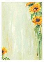 sigel DP694 Motiv-Papier, A4, 90g/qm, Motiv: Sunflower