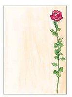 sigel DP695 Motivpapier, A4, 90g/qm, Motiv: Rose Bloom