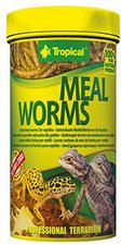 Tropical Meal Worms (250 ml)