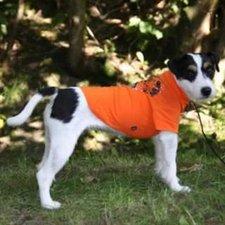 Trixie Hunde T-Shirt Bunbury M (35 cm)