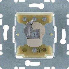 Berker Jalousie-Schlüsselschalter für Profil-Halbzylinder (4382)