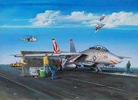 Trumpeter F-14A Tomcat (3201)
