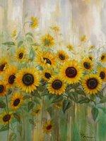 Home Affaire Kunstdruck Prieur Sonnenblumenwiese
