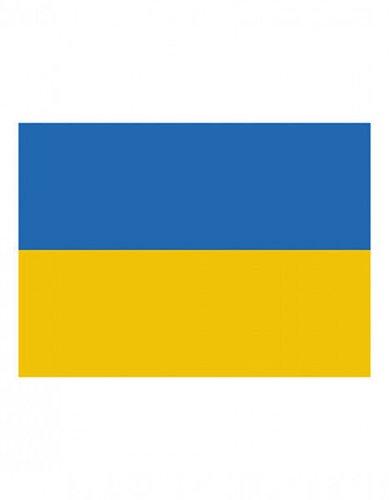 Ukraine Fahne EM 2016