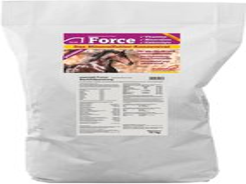 Marstal Force