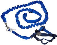 Petsafe Easy Walk Cat Harness / Leash (Gr. S)