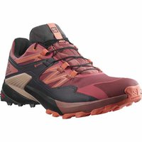 Salomon Wings Sky W GTX