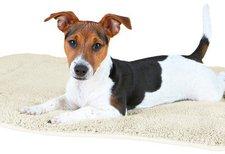 Trixie Hundedecke Dorien (95 × 68 cm)