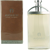 Aigner pour Homme After Shave (100 ml)