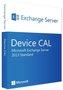 Microsoft MS Exchange Server 2013 (Single)