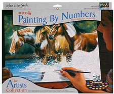 Reeves Large painting by Numbers - Heading Upstream