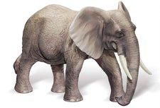 Ravensburger tiptoi Afrikanischer Elefantenbulle