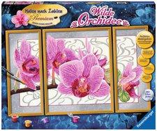 Ravensburger Malen nach Zahlen Wilde Orchidee