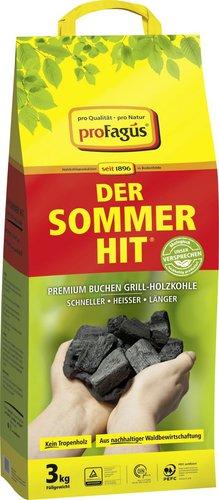 ProFagus Der Sommerhit Holzkohle 3kg