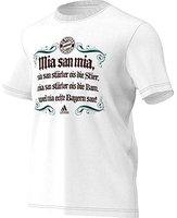 Adidas FC Bayern München Authentic Graphic T-Shirt