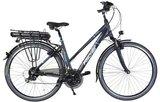 Fischer Proline Trekking e-bike