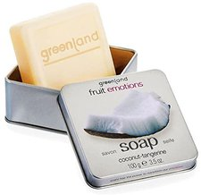 Greenland Fruit Emotions Coconut Tangerine Hand Soap (100 g)
