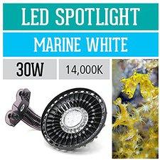 Arcadia Eco-Aqua 30W LED Spotlight Marine White