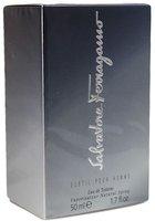 Salvatore Ferragamo Subtil pour Homme Eau de Toilette (50 ml)
