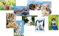 Ravensburger Tiere Mini-Puzzle