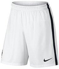 Nike Frankreich Shorts