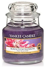 Yankee Candle Black Plum Blossom Small Jar Candle