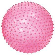 Ludi Exercise Ball