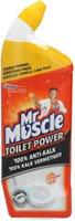 Mr Muscle Toilet Power 100% Anti-Kalk (750 ml)
