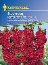 Kiepenkerl Stockrose ´´Chaters Double Red´´