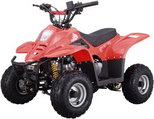 Luxxon Kinderquad Youngster 50 ccm rot