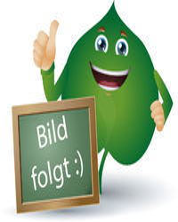 Hofmann & Sommer Melissengeist H Hofmanns Tropfen (500 ml)