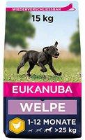 Eukanuba Puppy & Junior Large (15 kg)